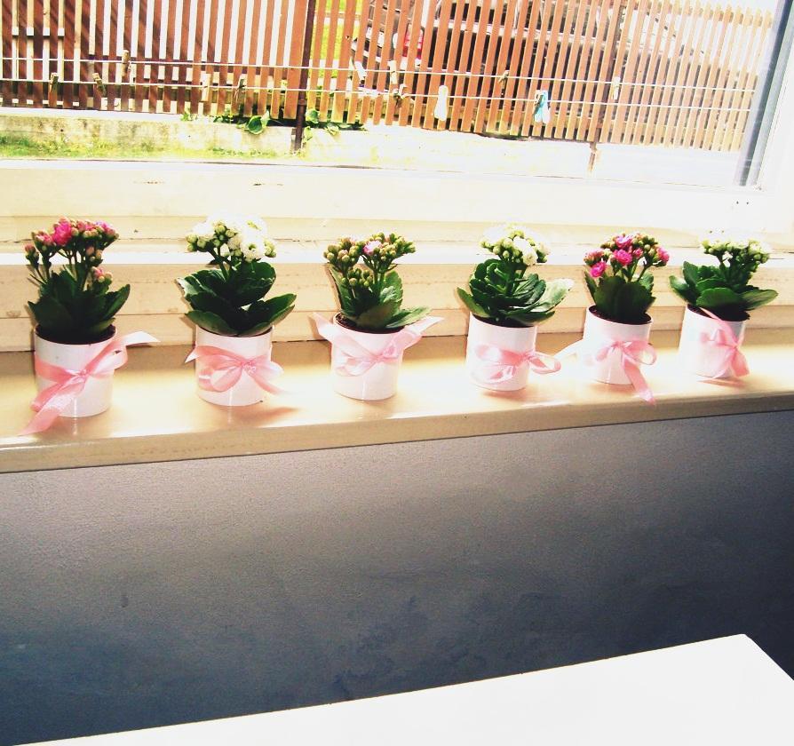 Maličké obaly na mini květiny - Obrázek č. 1