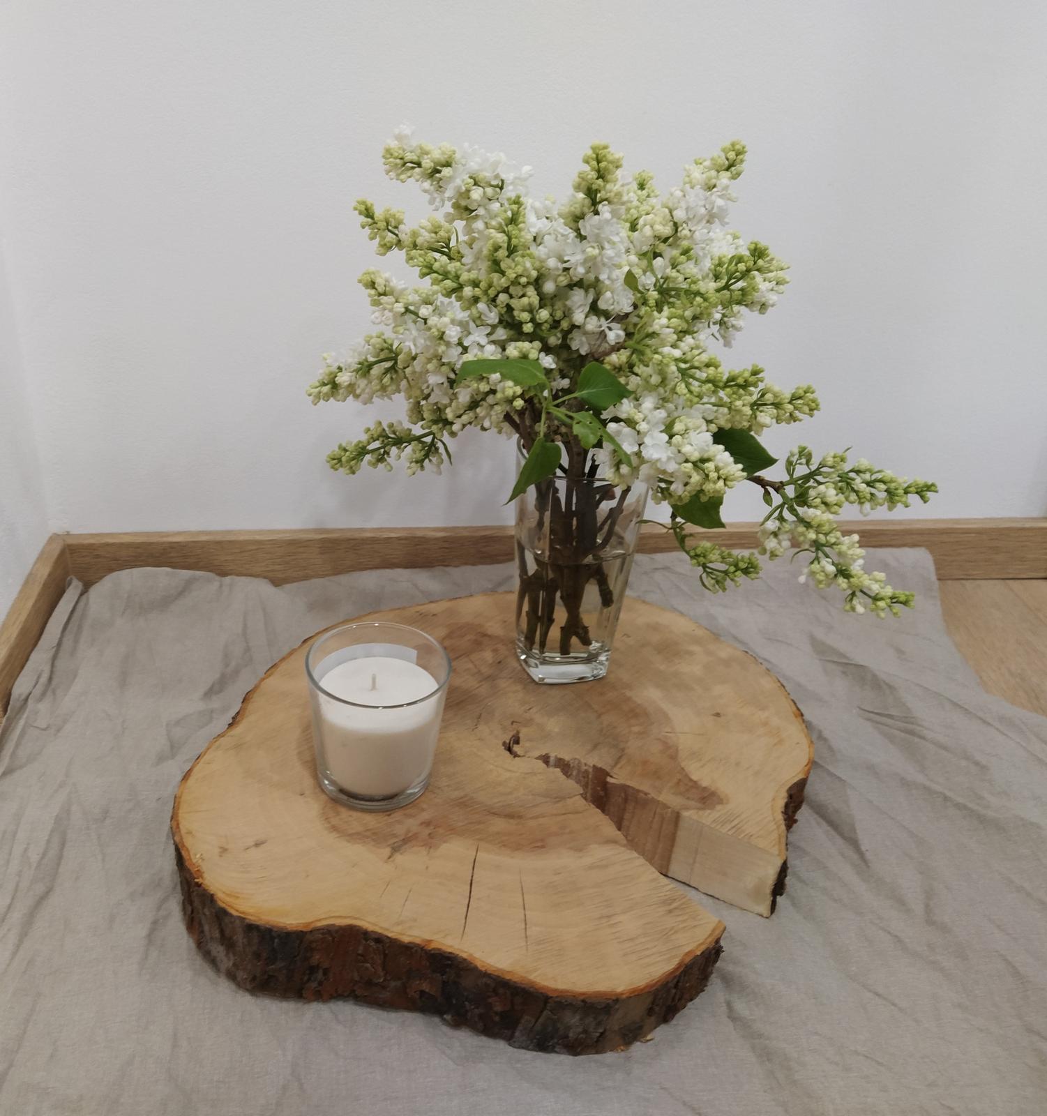 Dřevěné kulatiny/podnosy (průměr cca 35-40 cm) - Obrázek č. 1
