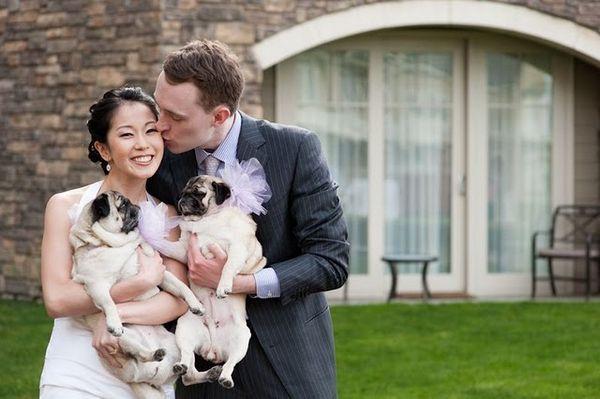 Svadobné mopsíky...alebo Bez psíka sa nevydávam :) - Obrázok č. 2