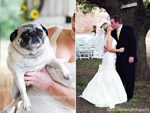 Svadobné mopsíky...alebo Bez psíka sa nevydávam :) - Obrázok č. 8