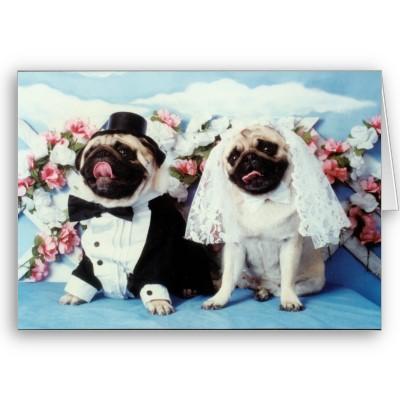 Svadobné mopsíky...alebo Bez psíka sa nevydávam :) - ďakovná kartička :)