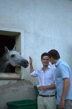 koník byl velká atrakce (foto ostatní)