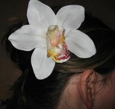 Este sa rozhodnem, ci bude tato kvetinka alebo korunka