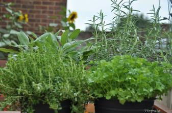 Parsley, sage, rosemary & thyme :)