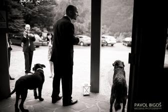 Ceka se na nevestu/ Waiting for the bride