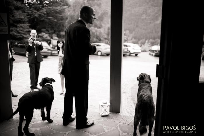 V{{_AND_}}N - Ceka se na nevestu/ Waiting for the bride