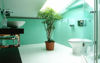 Na takový způsob bude koupelna...Jemné, decentní a kytky se tam budou hodit :-)