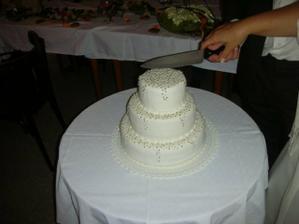můj hlavní dort