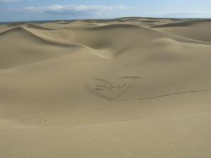 Nádherné duny <3