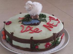 Dalsi narozeniny a dalsi tvoreni dortu... Ze by trenink na svatebni? :-D