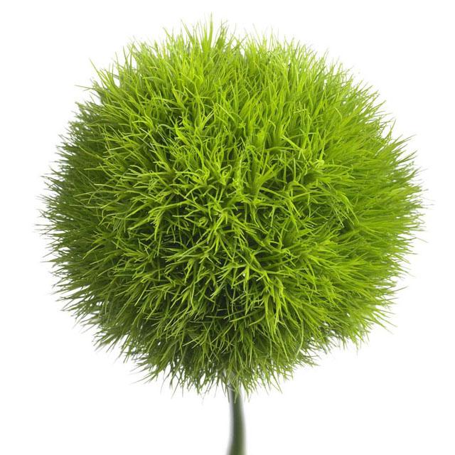 Inspirace, plány...i to co už máme  :-) - green trick :-) :-) ....zamilovala jsem se :-)