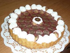 dort naživo