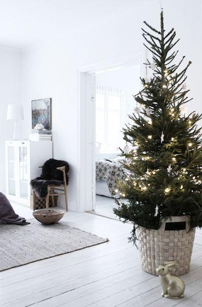 Vánoce - Obrázek č. 21