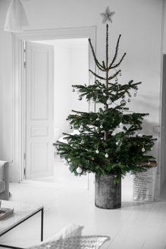 Vánoce - Obrázek č. 81
