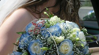 tohle by byly ideální růže