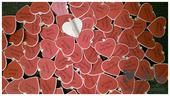 Menovka -drevený štipec (srdiečko),
