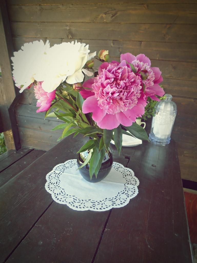 ♥ Mishell{{_AND_}}Peťo ♥ - moja zlatá maminka všade doma porozmiestňovala nádherné veľké voňavé pivonky z vlastnej záhradky :) ...keď už ich obidve máme tak veľmi rady  ;)
