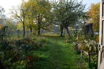 hmlisté jesenné ráno