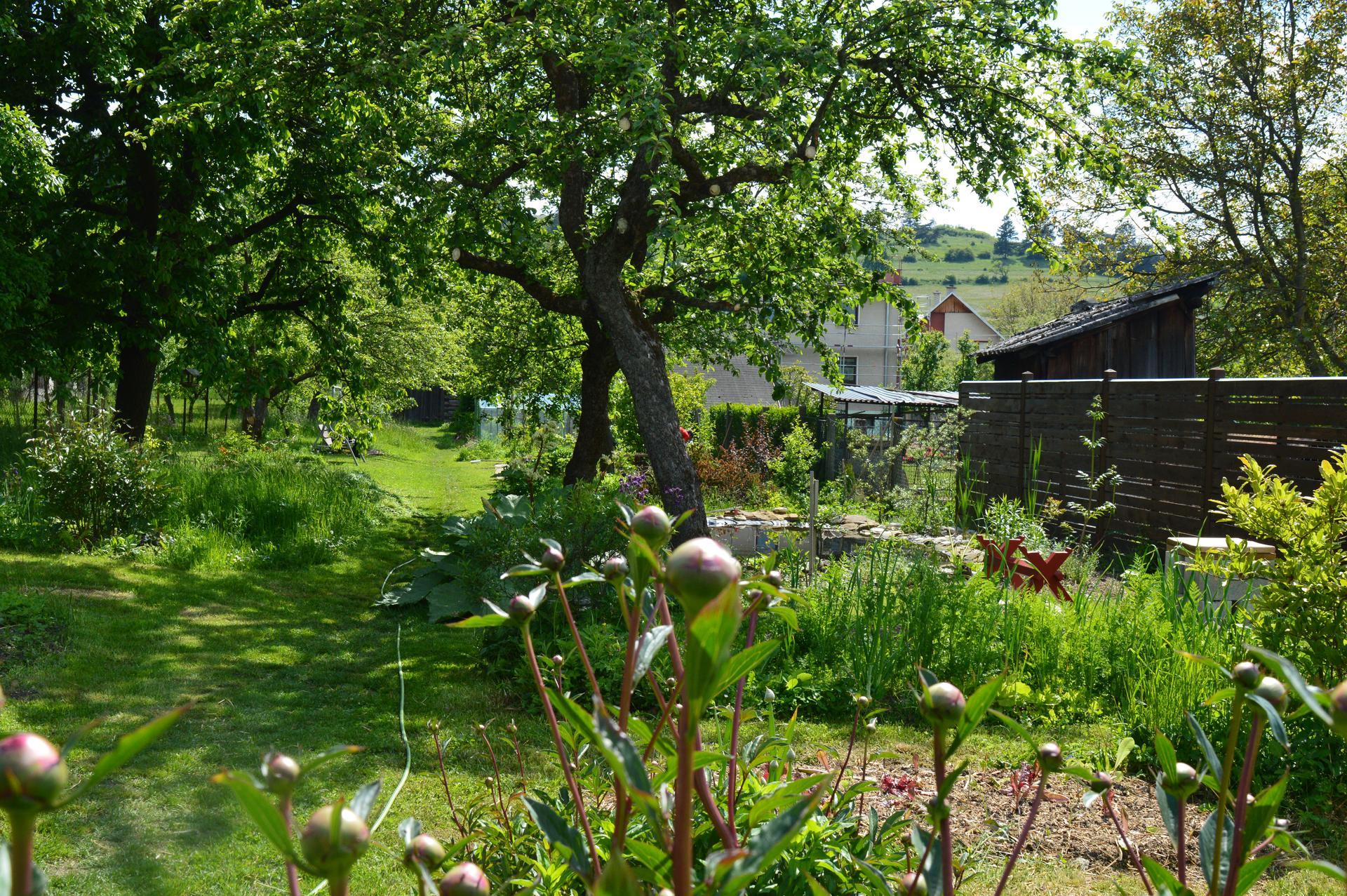 Naša prírodná perma záhradka v roku 2020 - už aj kosiť je nutnosťou