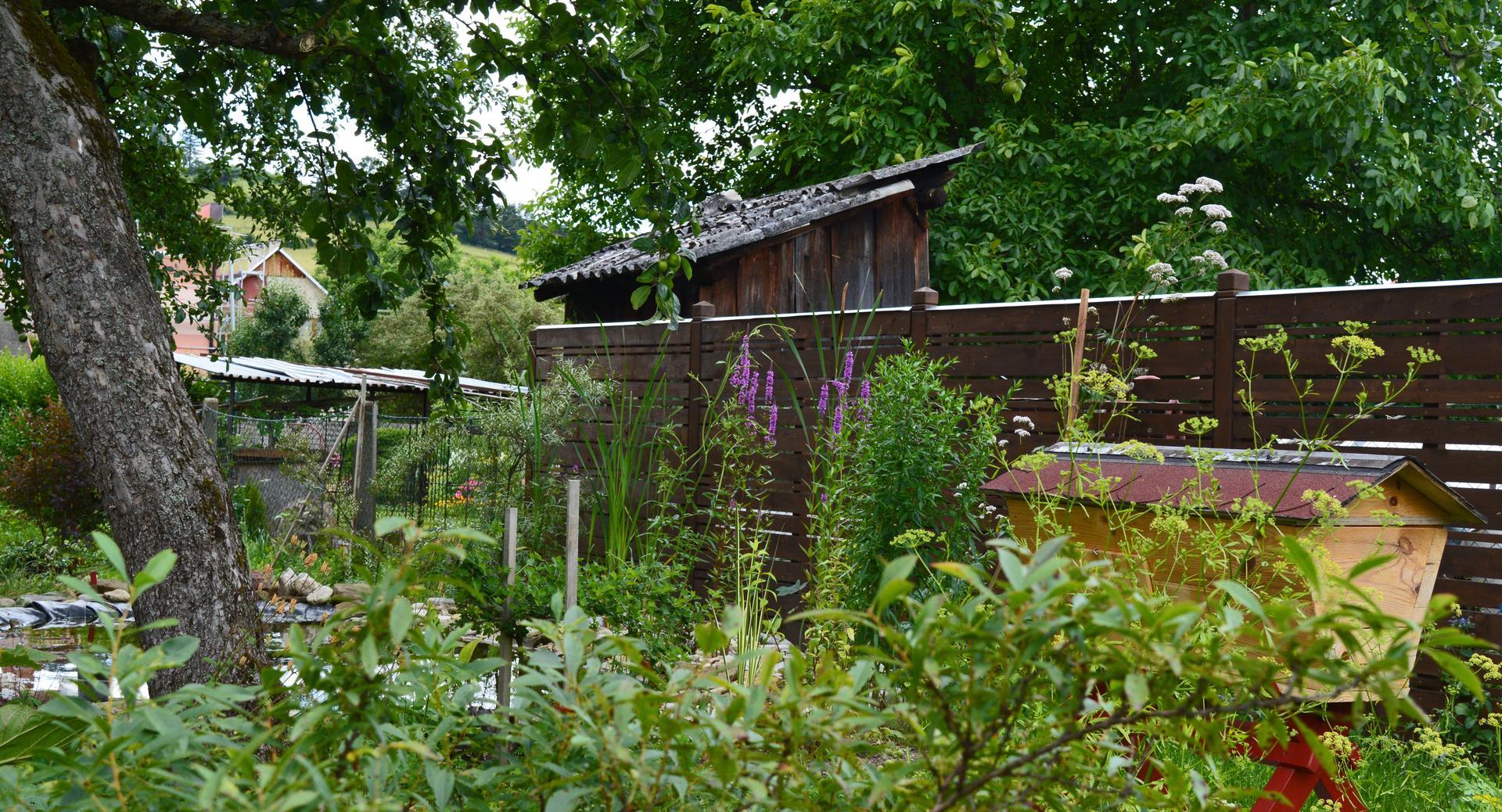 Naša prírodná perma záhradka v roku 2020 - kedysi a dnes: https://www.modrastrecha.sk/blog/ivus78/album/nasa-nielen-permakulturna-zahradka-44mdg9/16281921/