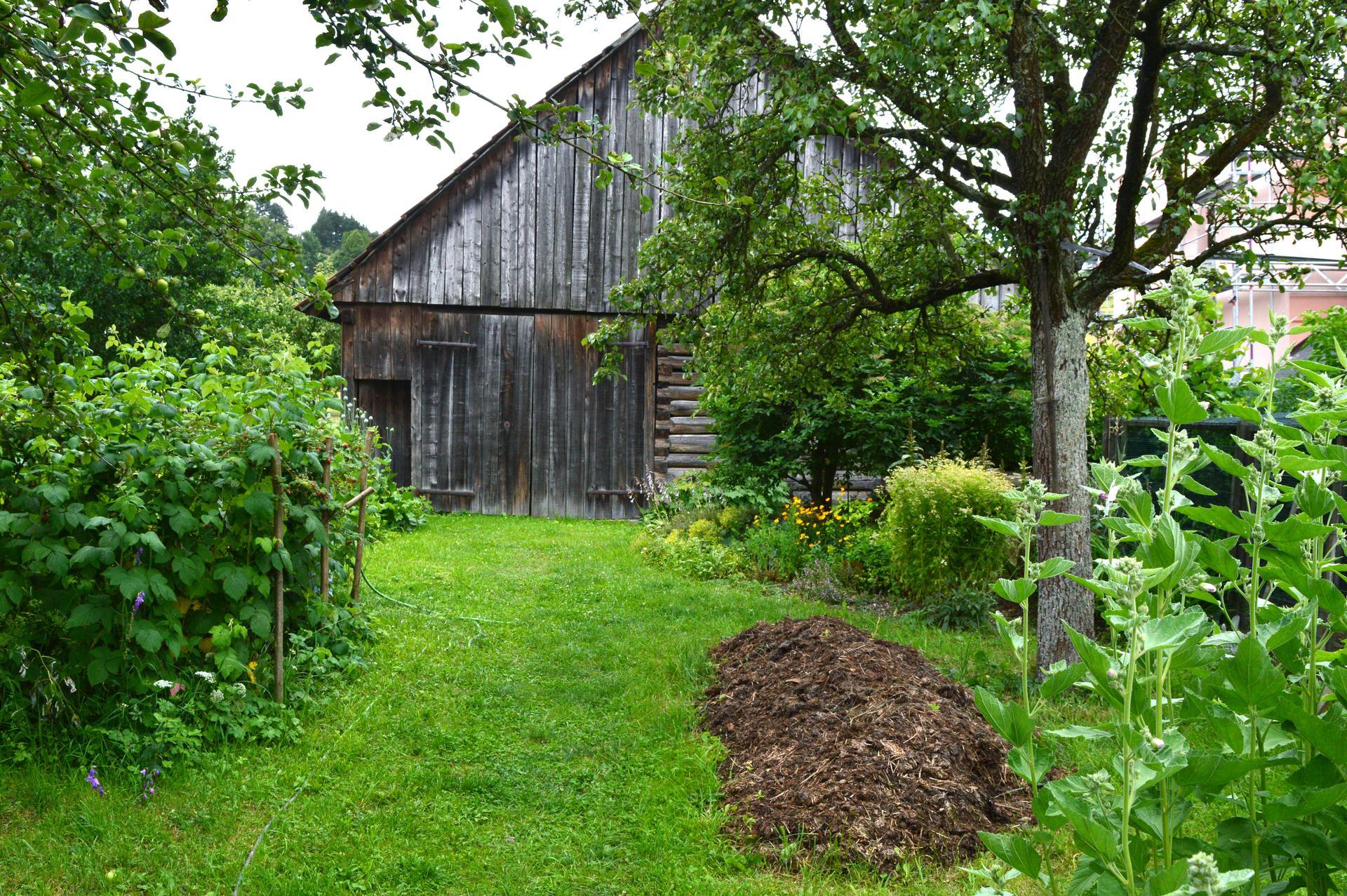 Naša prírodná perma záhradka v roku 2020 - no a pár spomienok / premien: https://www.modrastrecha.sk/blog/ivus78/album/nasa-nielen-permakulturna-zahradka-44mdg9/13917230/
