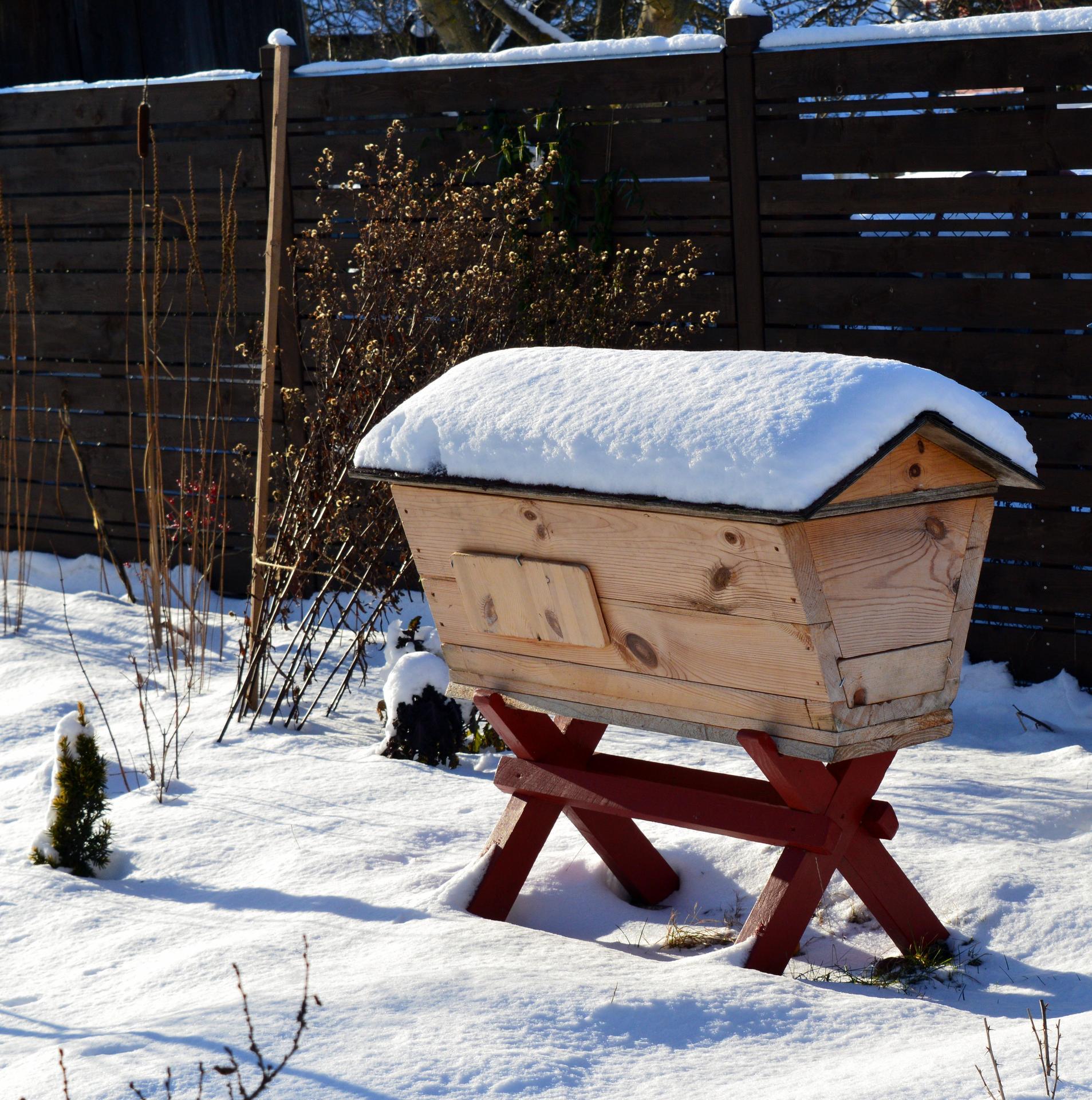 Naša prírodná perma záhradka v roku 2021 - 1/2021 zazimované včeličky v mednej krave