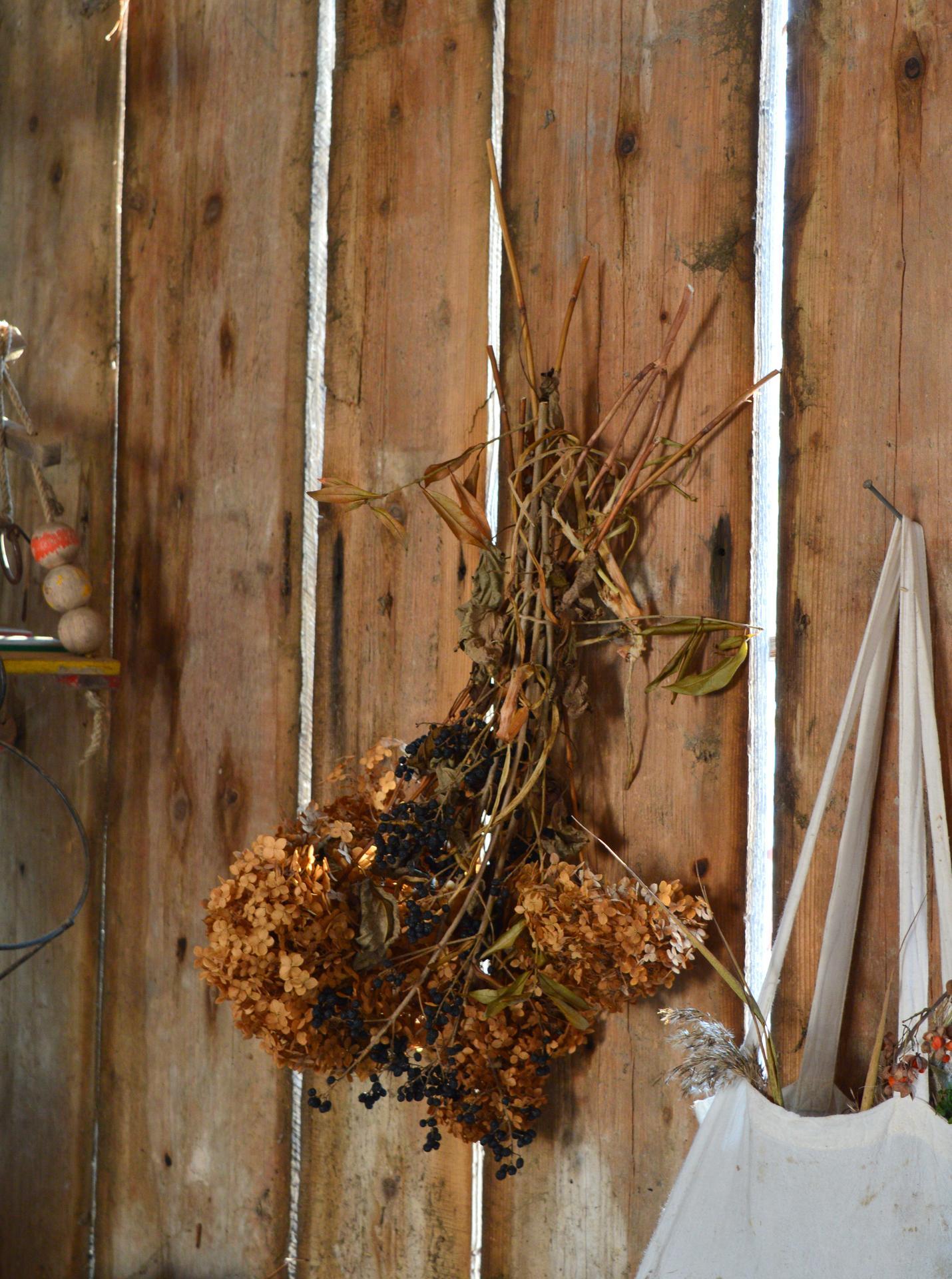 Naša prírodná perma záhradka v roku 2021 - 1/2021 - v kôlni