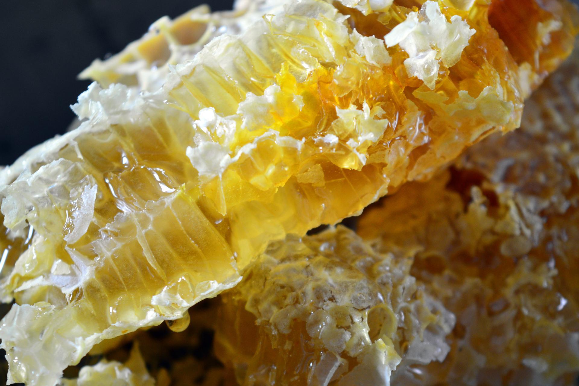 Naša prírodná perma záhradka v roku 2021 - 2/2021 - jedli ste niekedy med priamo z plástu? Chuť sa nedá porovnať.