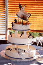 tak tento dort jsme vybrali