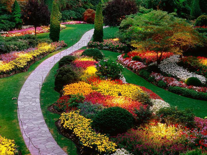Záhrada-inšpirácie - Obrázok č. 84