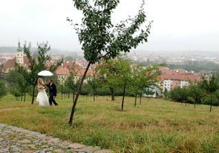 prší a prší, byla jsem už jak vodník ne nevěsta
