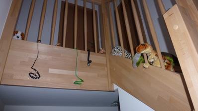 synovec nám lehce vytunil schodiště :-)