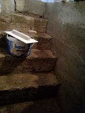 schody do pivnice, pred úpravou :)