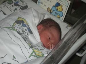 Zlaticko c. 2 :-) - Tommaso *10.5.2012