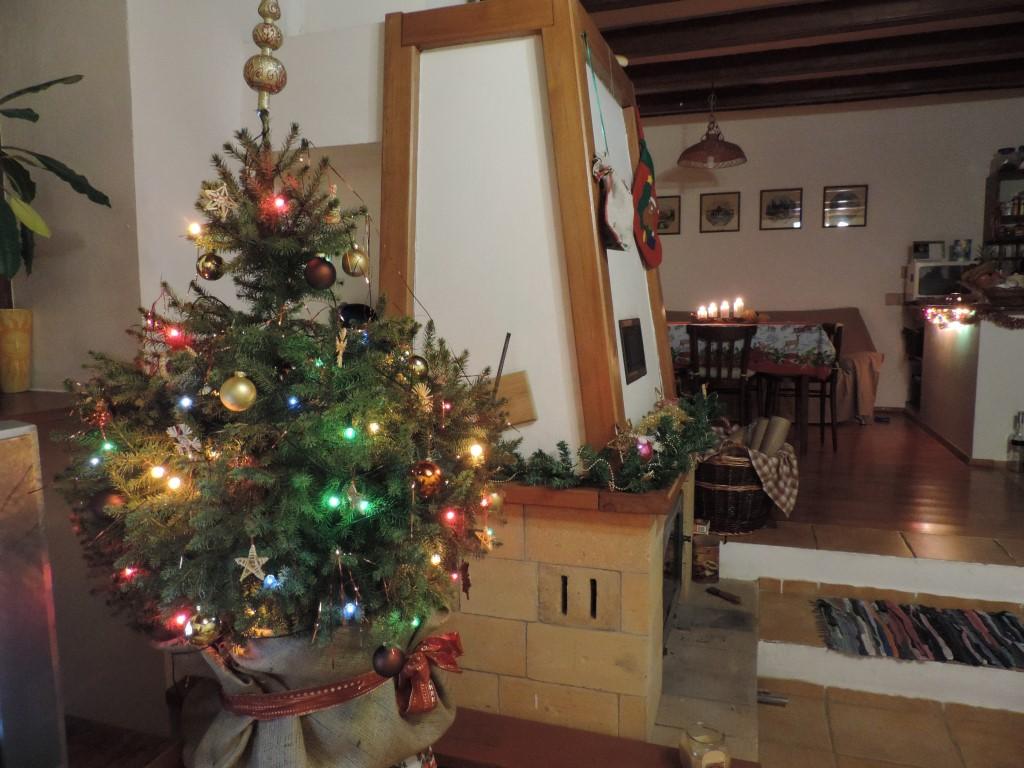 Naše Vianoce na vidieku - Obrázok č. 3