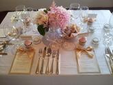 Svatební služby můžete objednávat na emailu: petra.svobodova@mojeparty.cz
