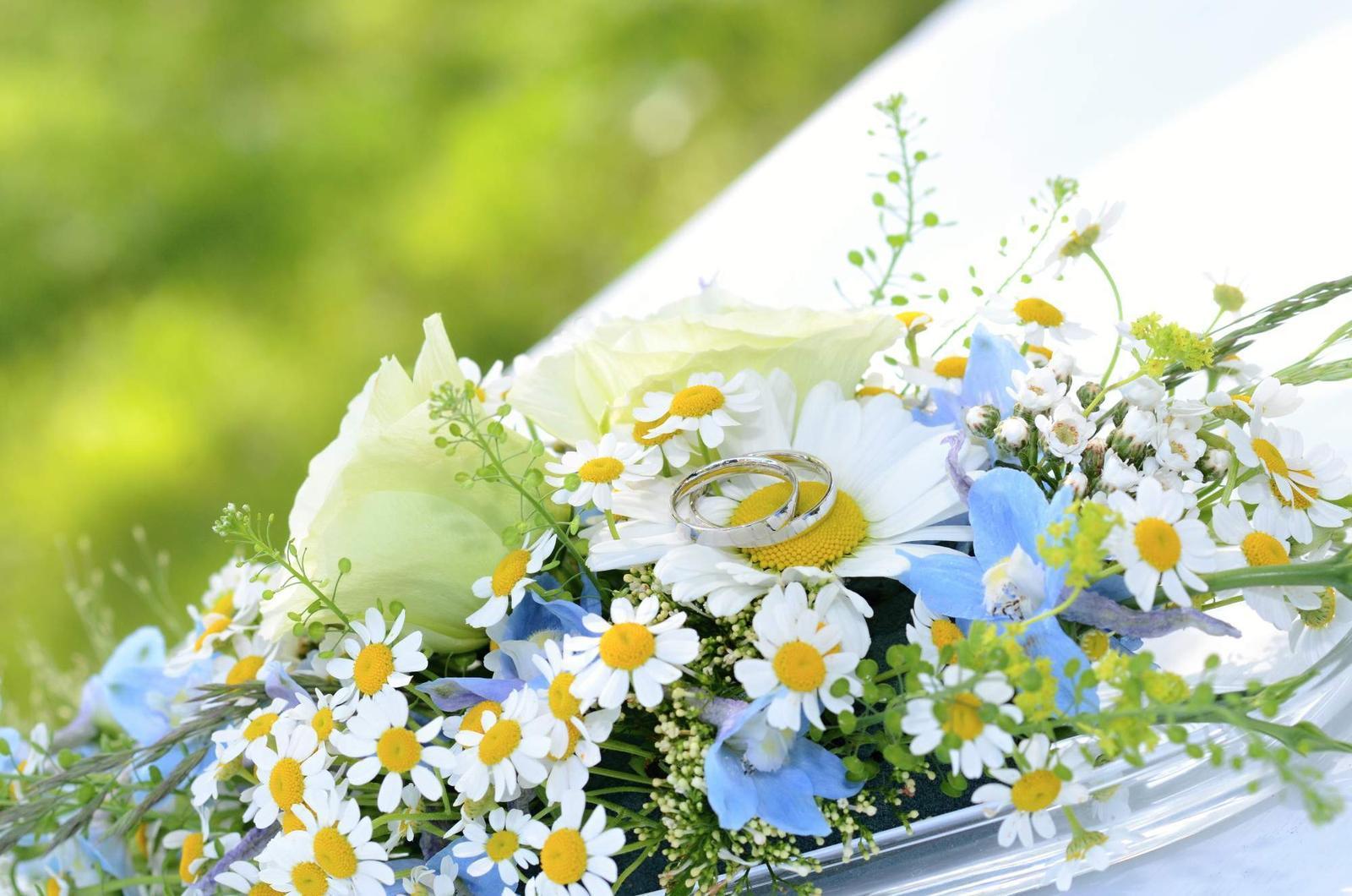 Luční svatba - Obrázek č. 2