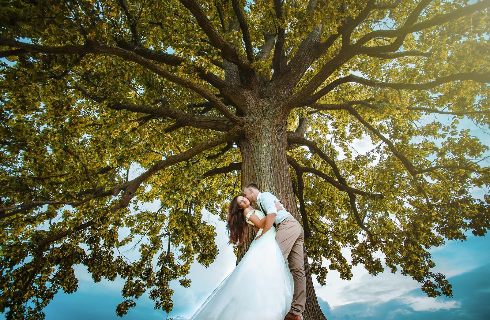 Weddings 👰2019 - Obrázek č. 15