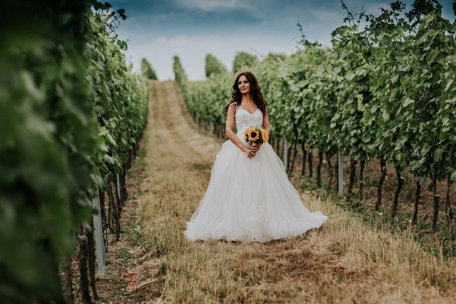 Svatba Nikča a Lukáš - Obrázek č. 2