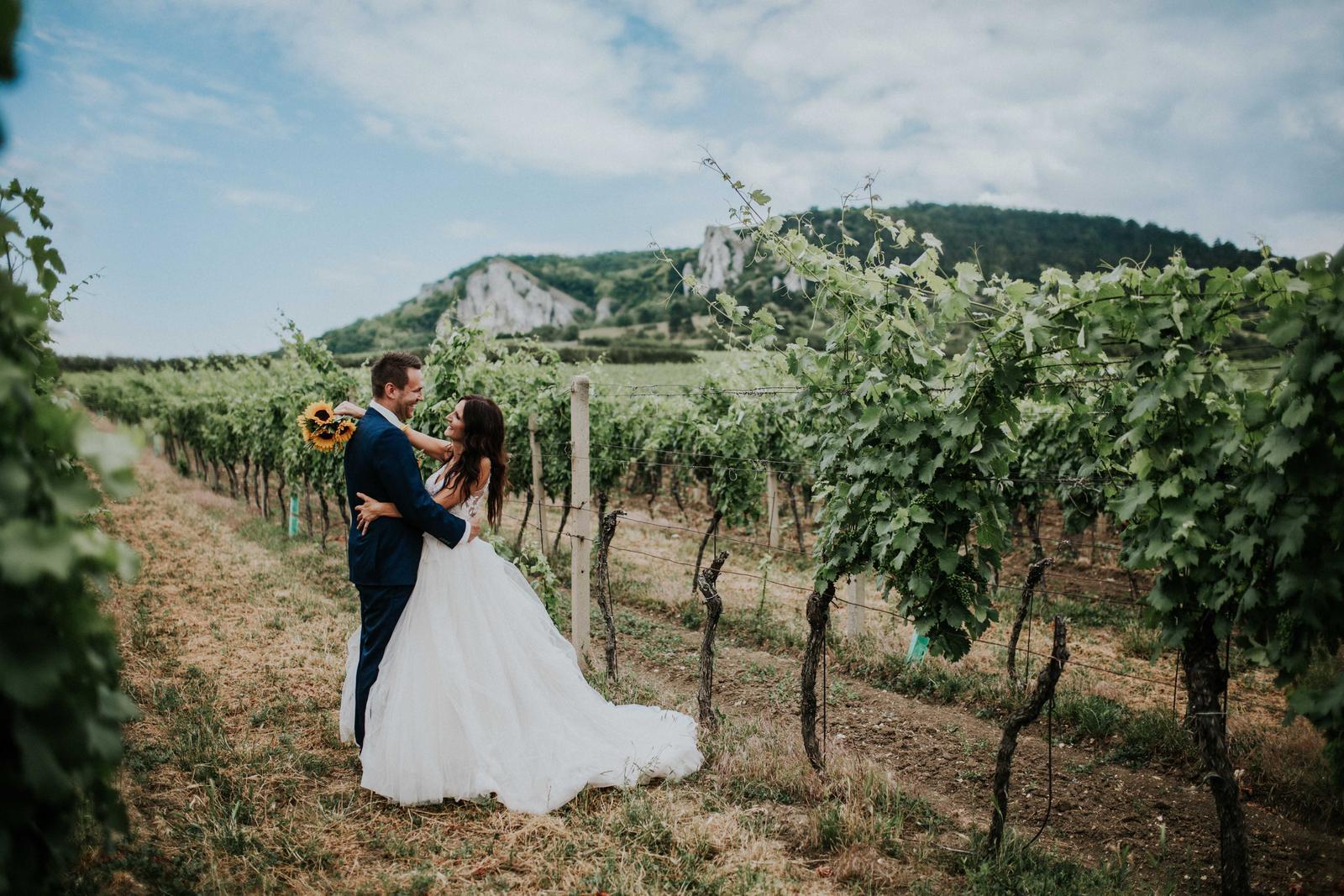 Svatba Nikča a Lukáš - Obrázek č. 8