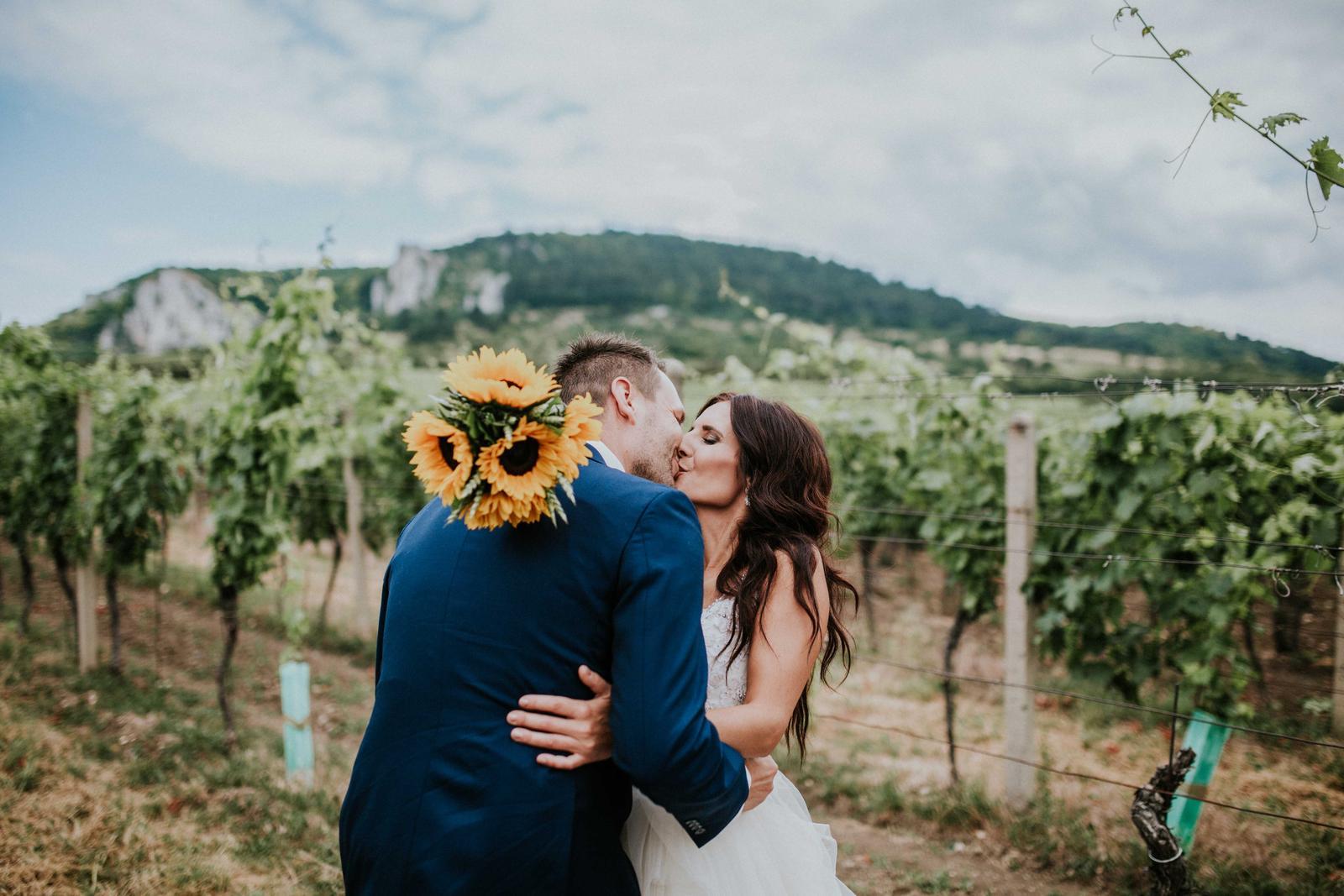 Svatba Nikča a Lukáš - Obrázek č. 10