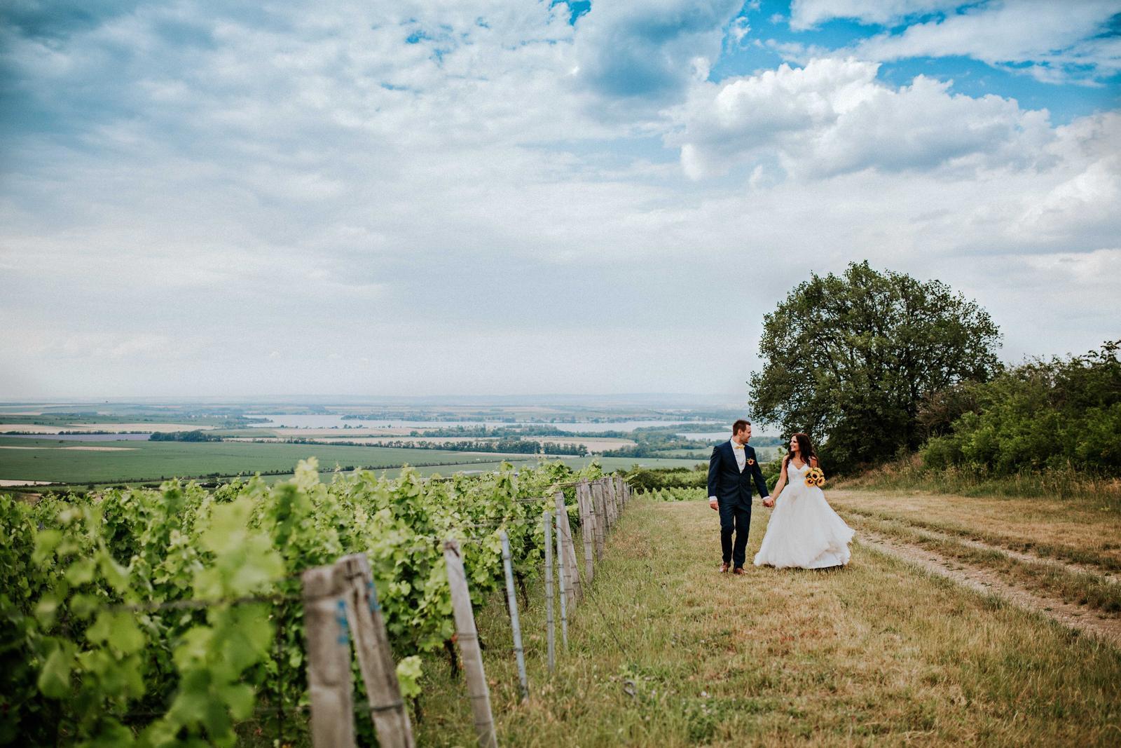 Svatba Nikča a Lukáš - Obrázek č. 16