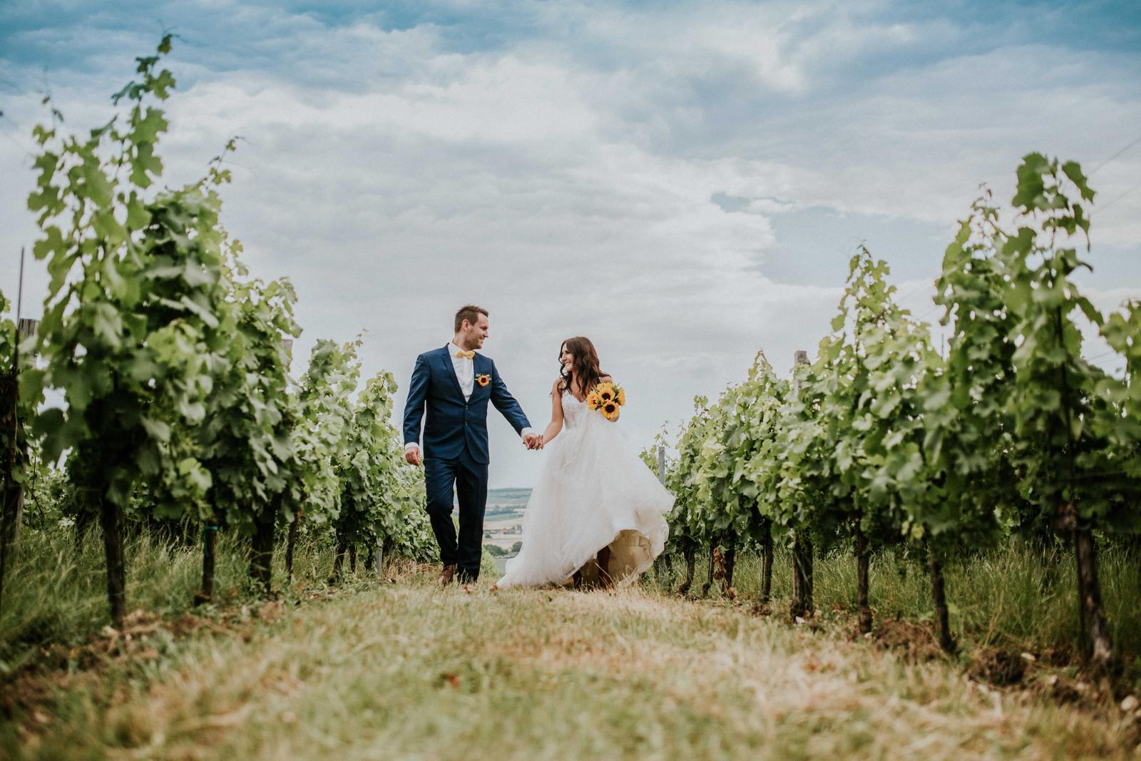 Svatba Nikča a Lukáš - Obrázek č. 18