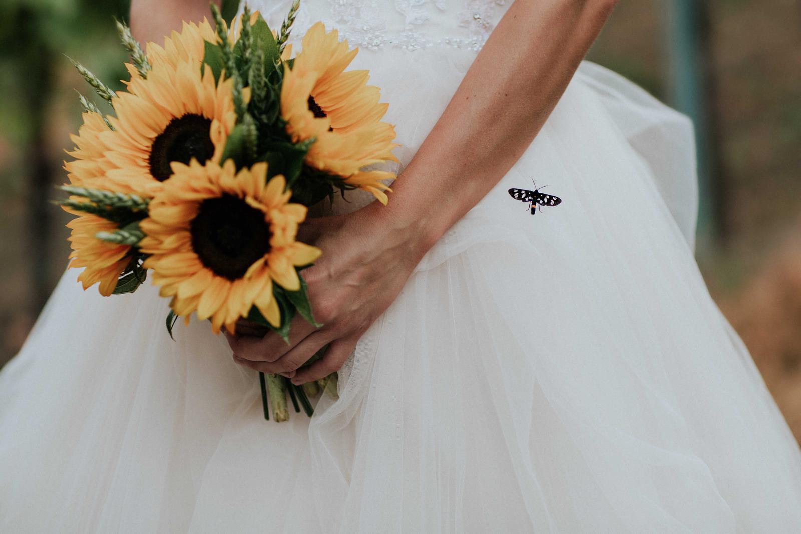 Svatba Nikča a Lukáš - Obrázek č. 22