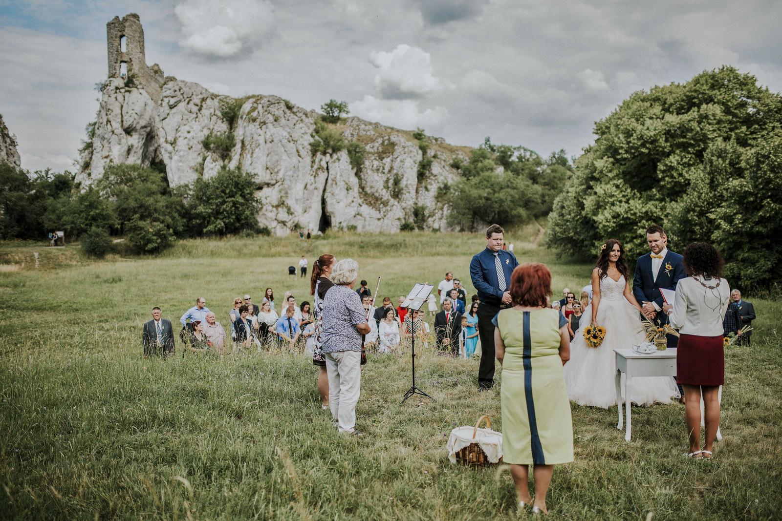 Svatba Nikča a Lukáš - Obrázek č. 50