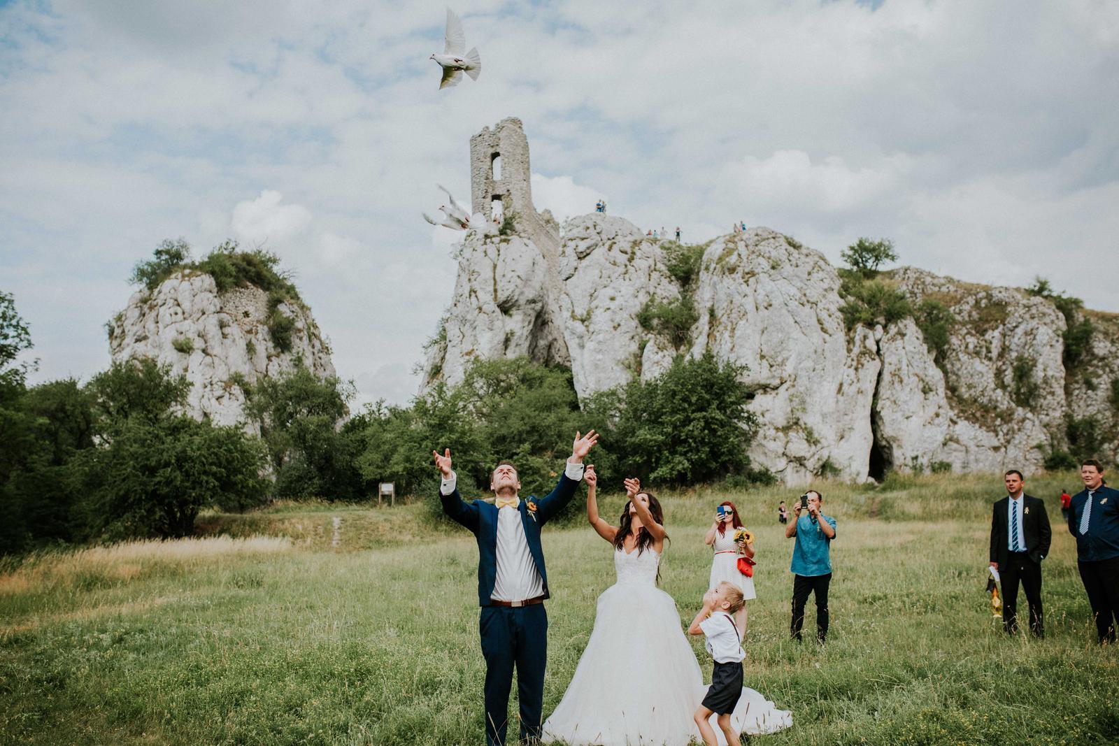 Svatba Nikča a Lukáš - Obrázek č. 60
