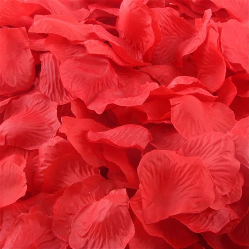 Okvětní lístky růží - Obrázek č. 1