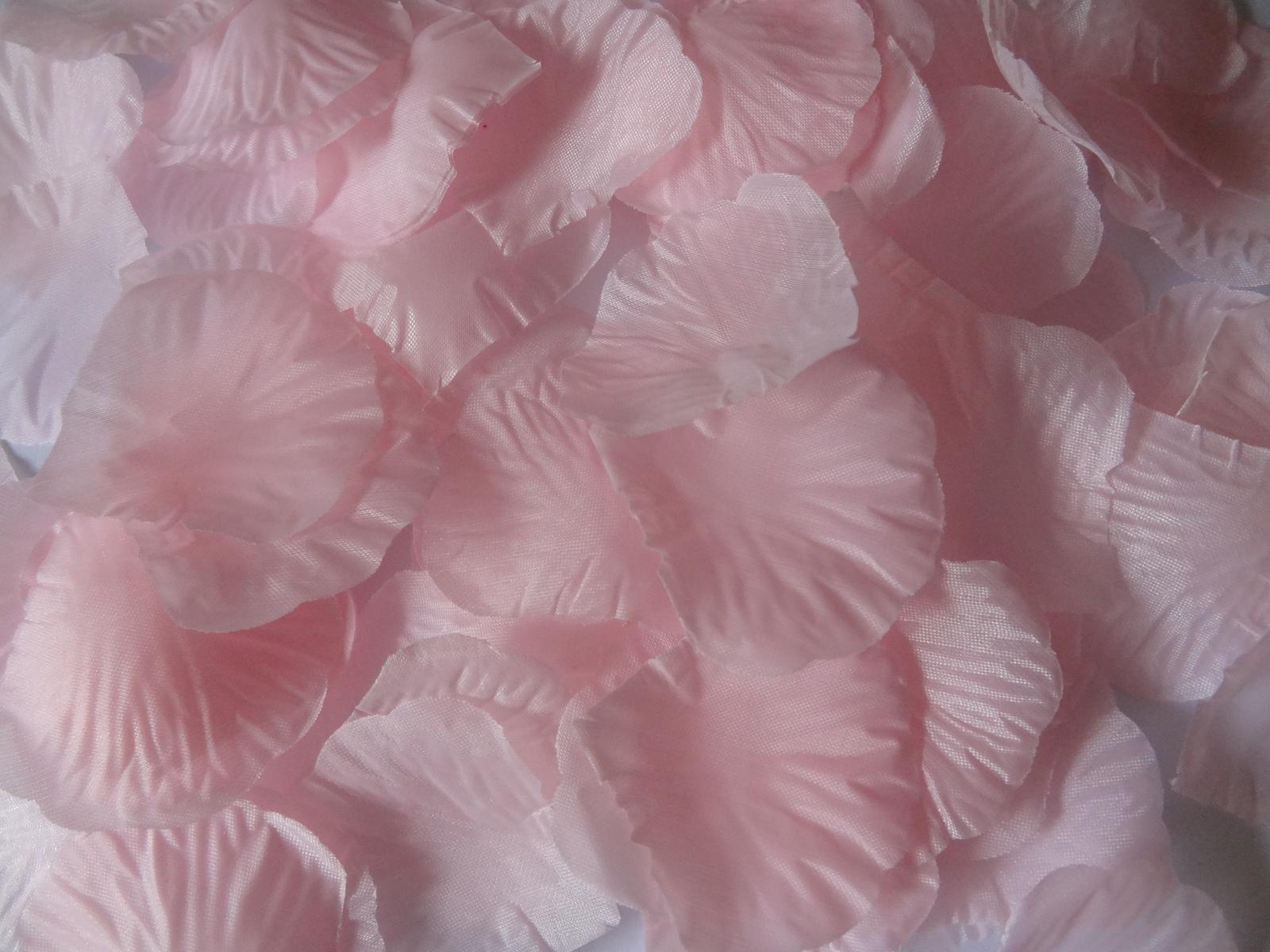 Okvětní lístky růží - růžová - Obrázek č. 1