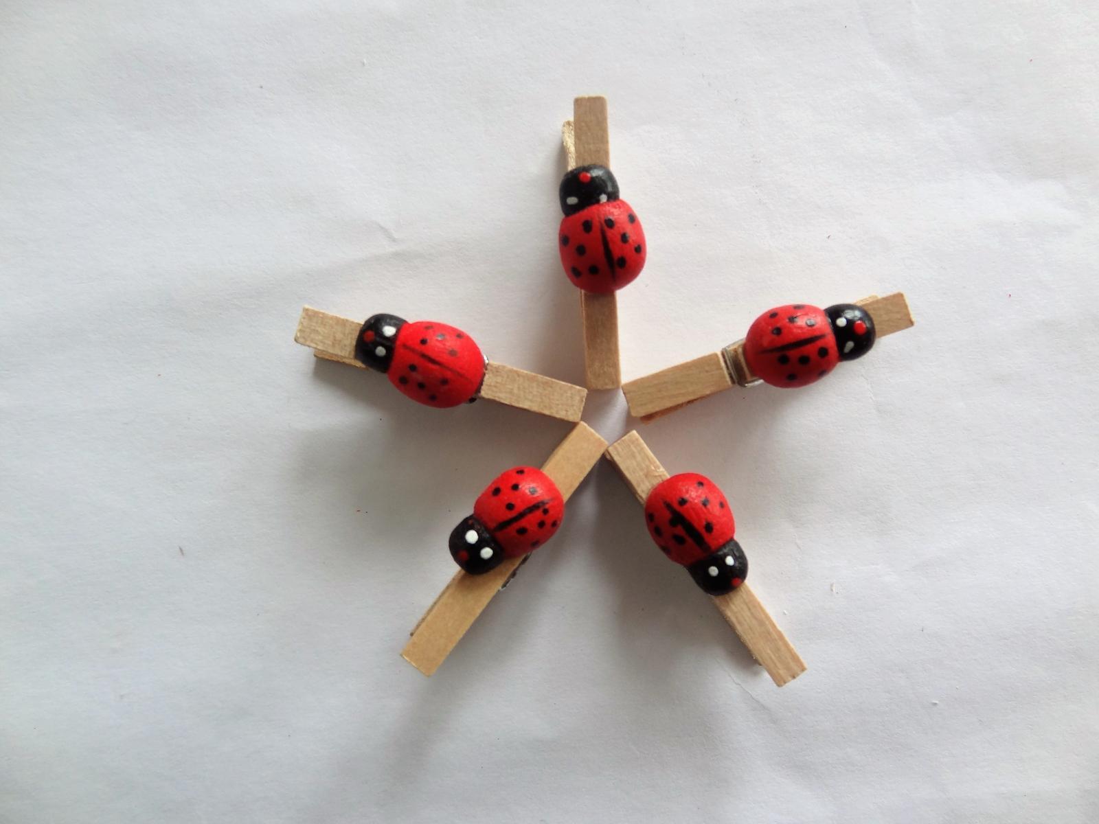 Kolíčky - Obrázek č. 1