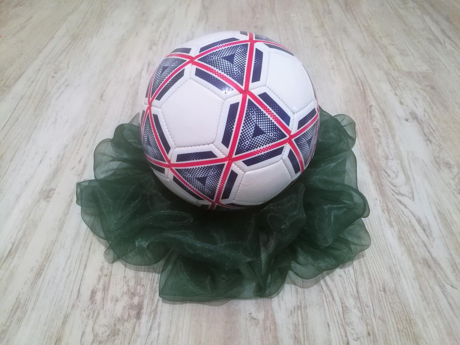 Fotbalový míč - Obrázek č. 1